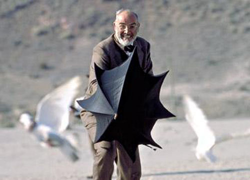 Image result for indiana jones last crusade sean connery seagulls scene