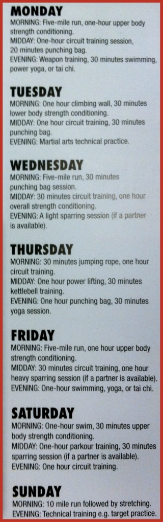 Along with this intense workout, you will need to find an old retired boxer to beat you up regularly and teach you to fight dirty.  Basically you need either Wildcat or Mickey from Rocky!