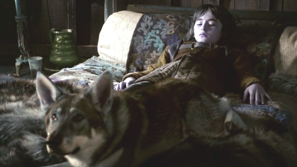 Summer-Bran-direwolf-game-of-thrones-direwolves-30439889-624-352